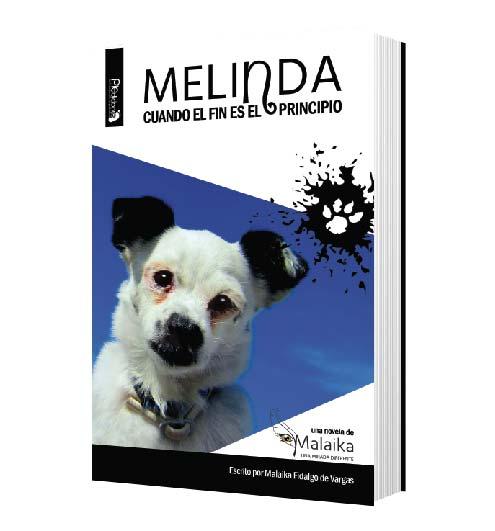 MELINDA CUANDO EL FIN ES EL PRINCIPIO - LIBRO